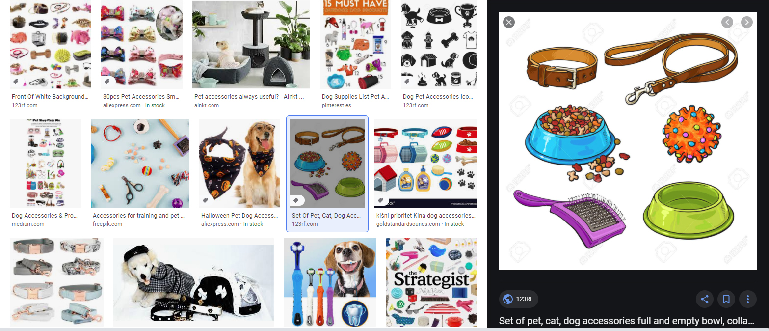 Pet Accessories Online for pets owners