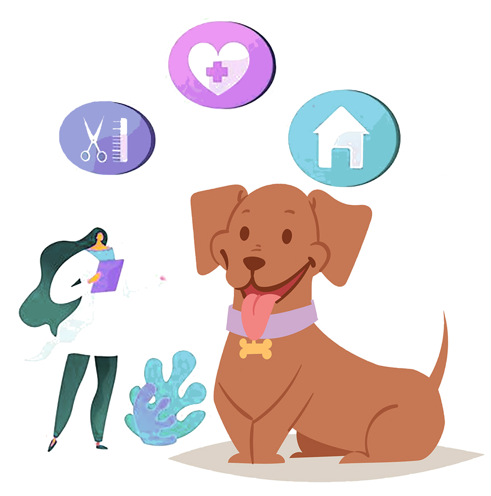 pet care services at petscarebox
