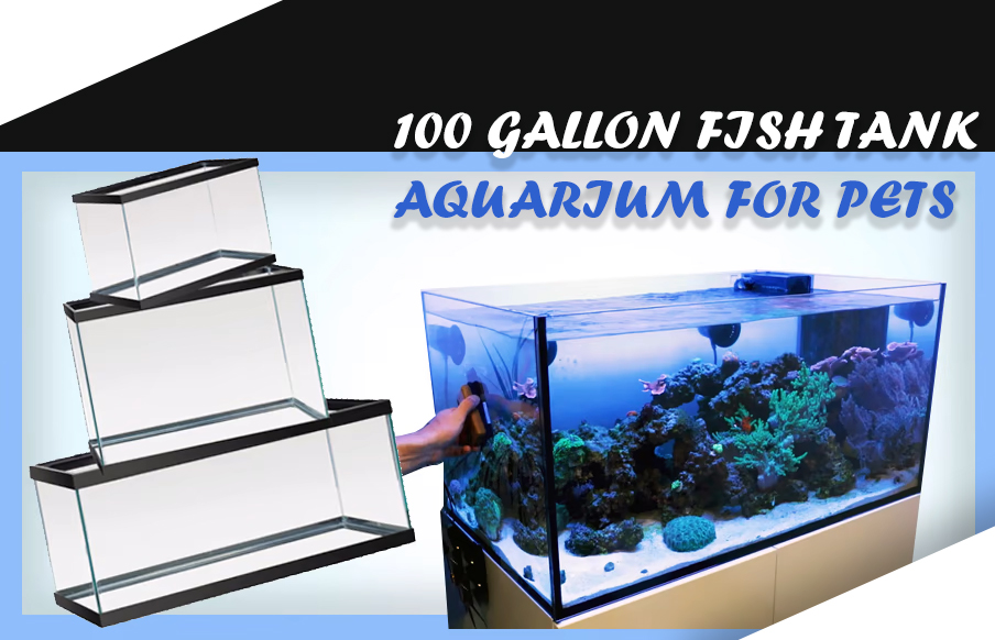 100 GALLON FISH TANK aquarium for pets