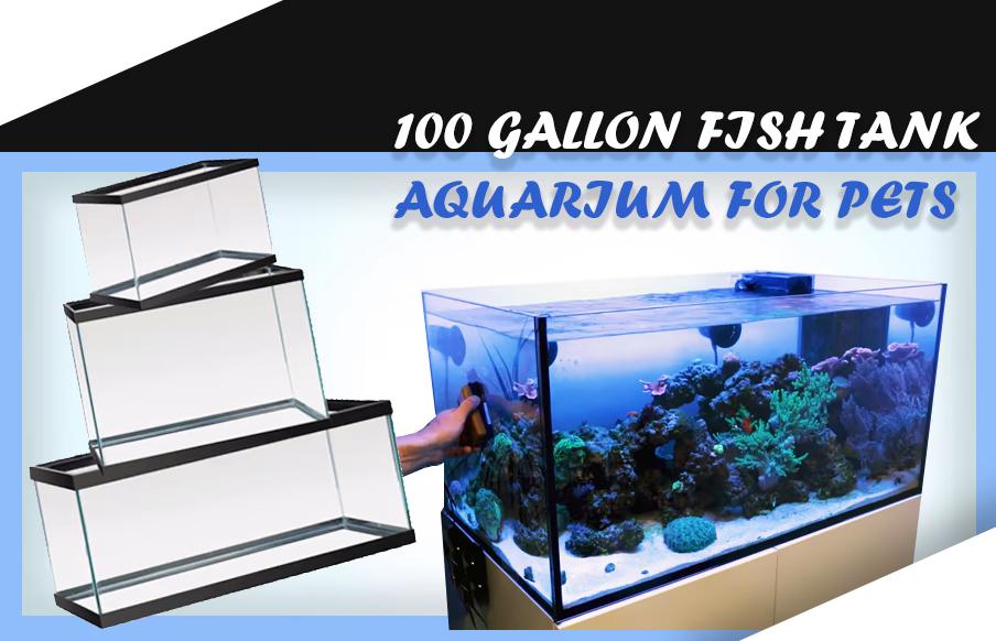 100 GALLON FISH TANK aquarium for pets