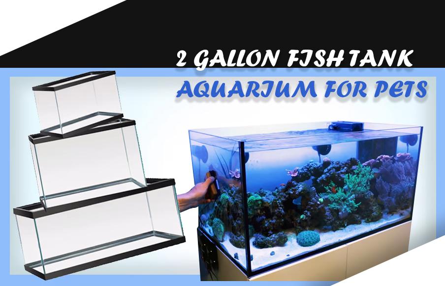 2 GALLON FISH TANK aquarium for pets