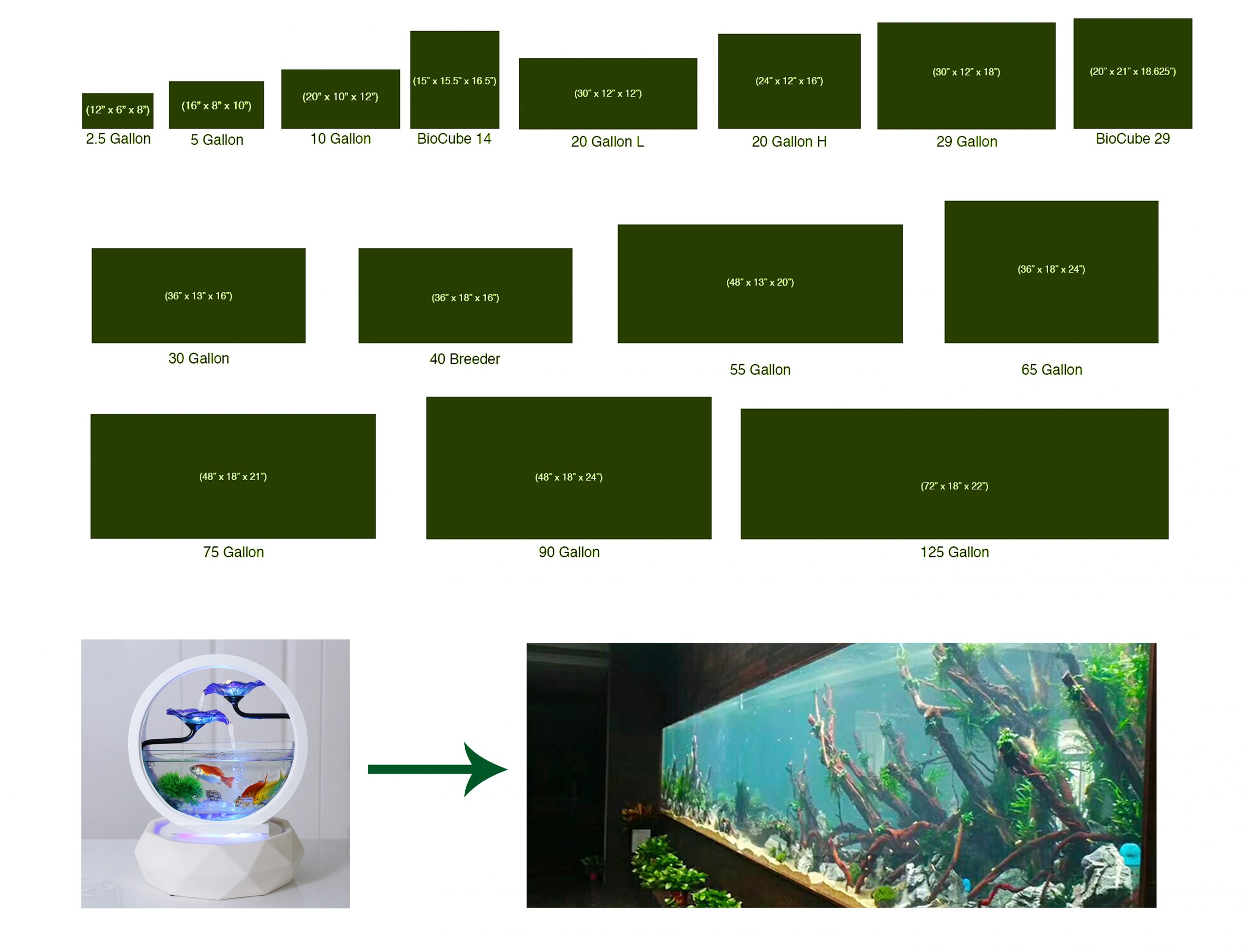 all sizes gallon fish tanks aquarium for fishes pets